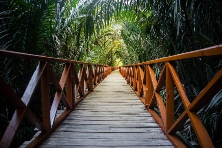 Bridge – Dream Meaning and Symbolism 1