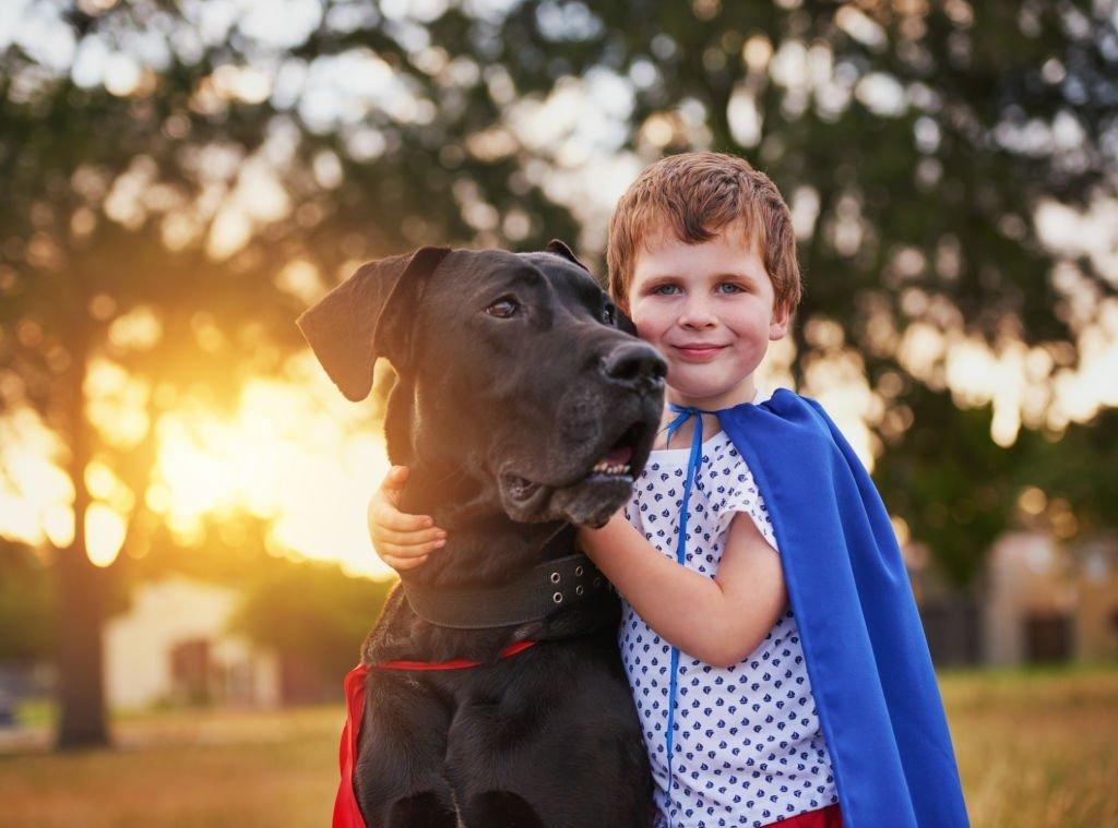 Perro Salvaje – Significado Y Simbolismo De Los Sueños 5