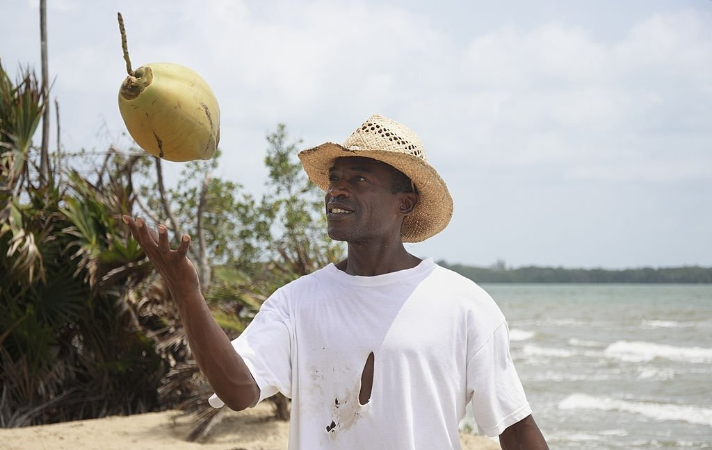 Coconut – Dream Meaning and Symbolism 4