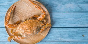 Crab – Dream Meaning and Symbolism 102