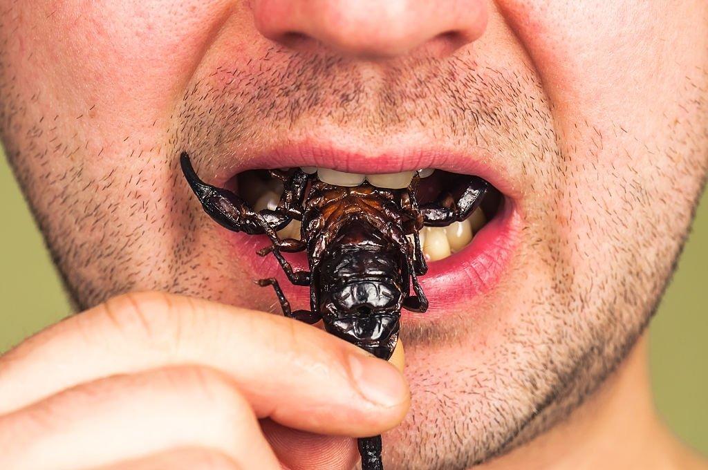 Escorpión – Significado Y Simbolismo De Los Sueños 4
