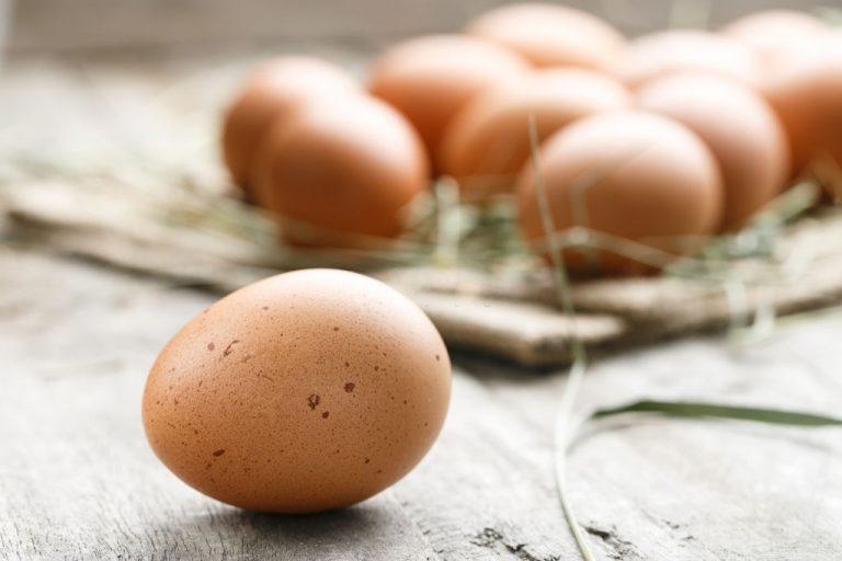 Egg – Dream Meaning and Symbolism 1