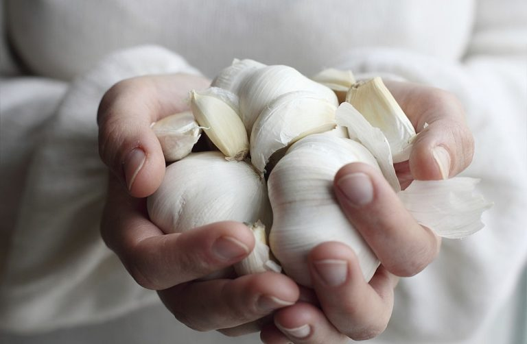 Garlic – Dream Meaning and Symbolism 1