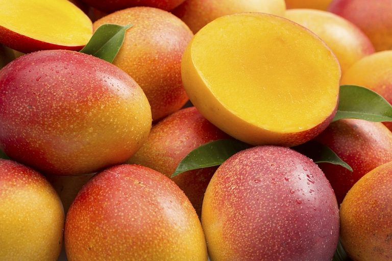 Mango – Dream Meaning and Symbolism 1