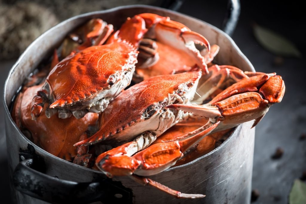 Crab – Dream Meaning and Symbolism 4