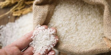 Rice – Dream Meaning and Symbolism 77