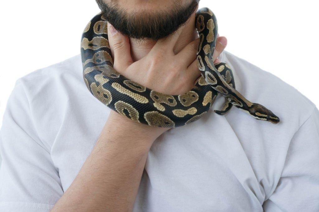 snake in neck