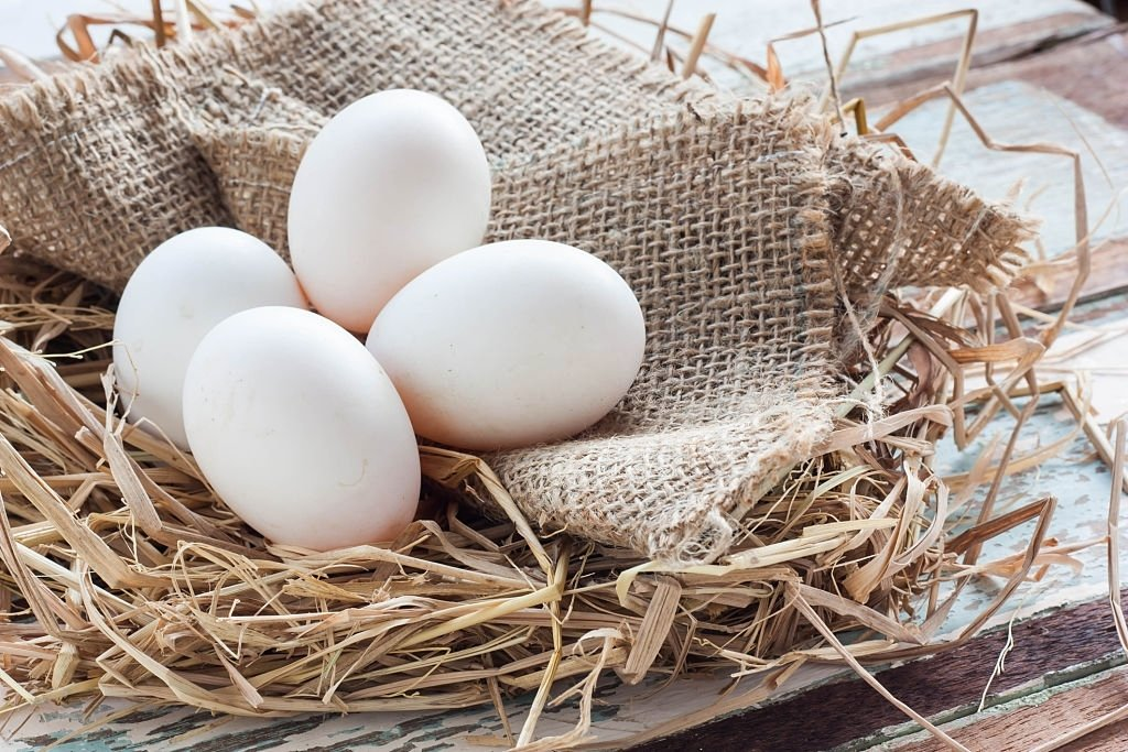 Egg – Dream Meaning and Symbolism 4