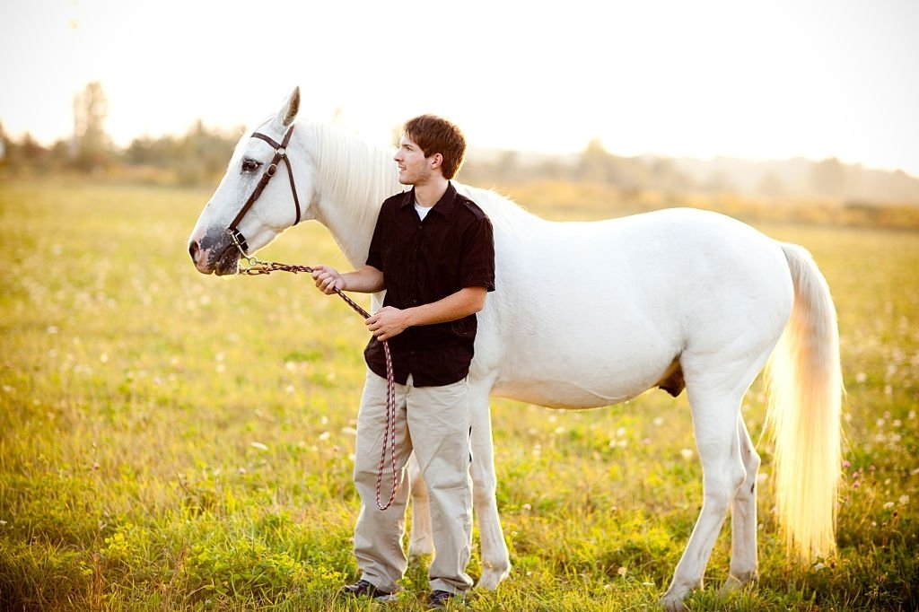 White Horse – Dream Meaning and Symbolism 4