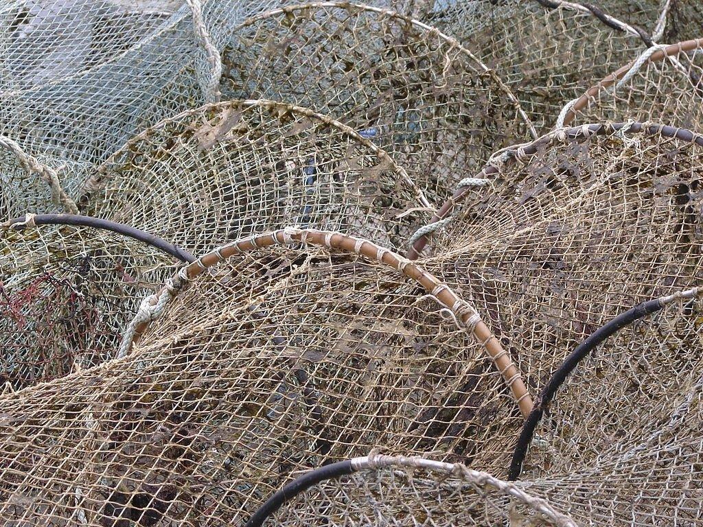 Fishing Network