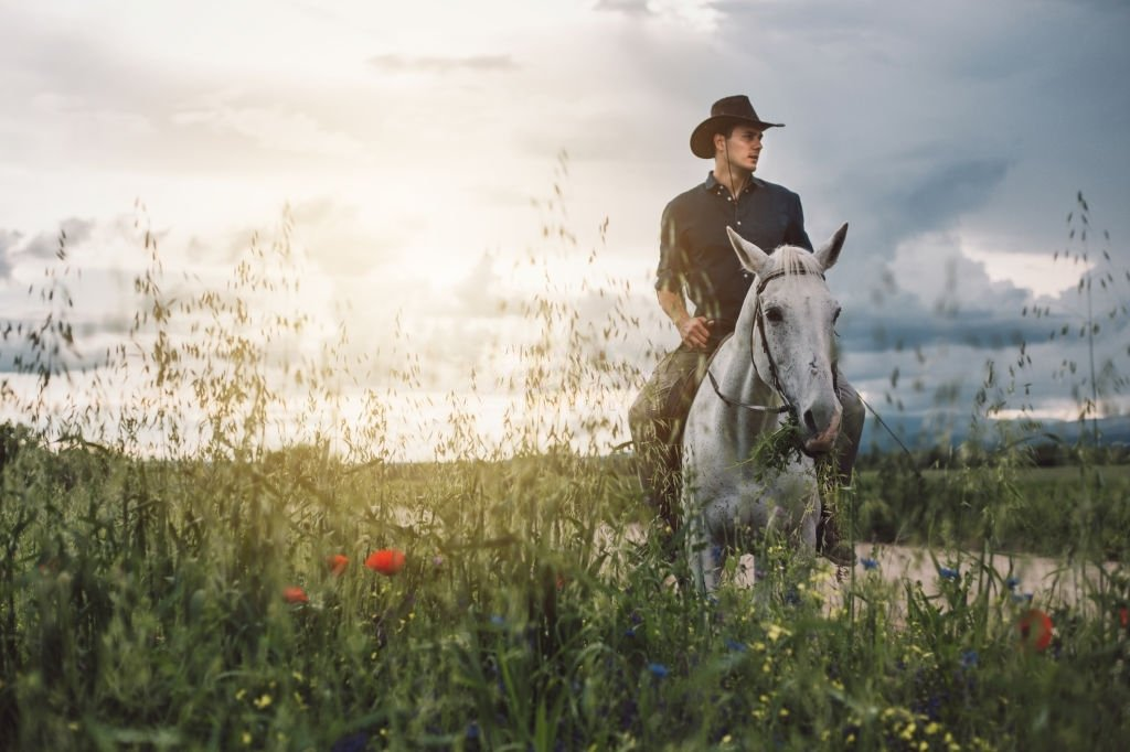 White Horse – Dream Meaning and Symbolism 3